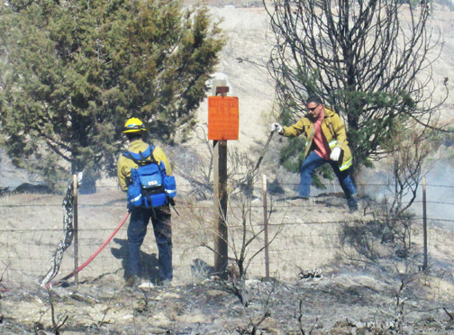 Kern County firefighters make quick work of extinguishing flames along Frazier Mountain Park Road in Lebec. [photo by Gary Meyer]
