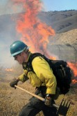 Firefighters quickly halt Lebec fire
