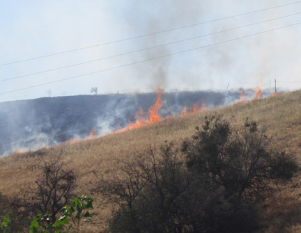 Flames from the Lebec fire on a ridge above Lebec Road. [photo by Gary Meyer, The Mountain Enterprise]