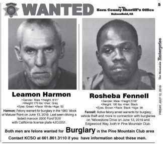 Leamon Harmon has been arrested and is in custody on multiple felony warrants. He is suspected in Pine Mountain Club burglaries. Rosheba Fennell has not yet been apprehended. Double Click on this image to see it full size.