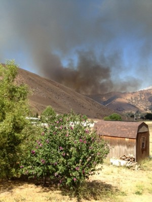 Kevin McDonnell of Lebec sent this view of the fire from his home in the O'Neill Canyon area.