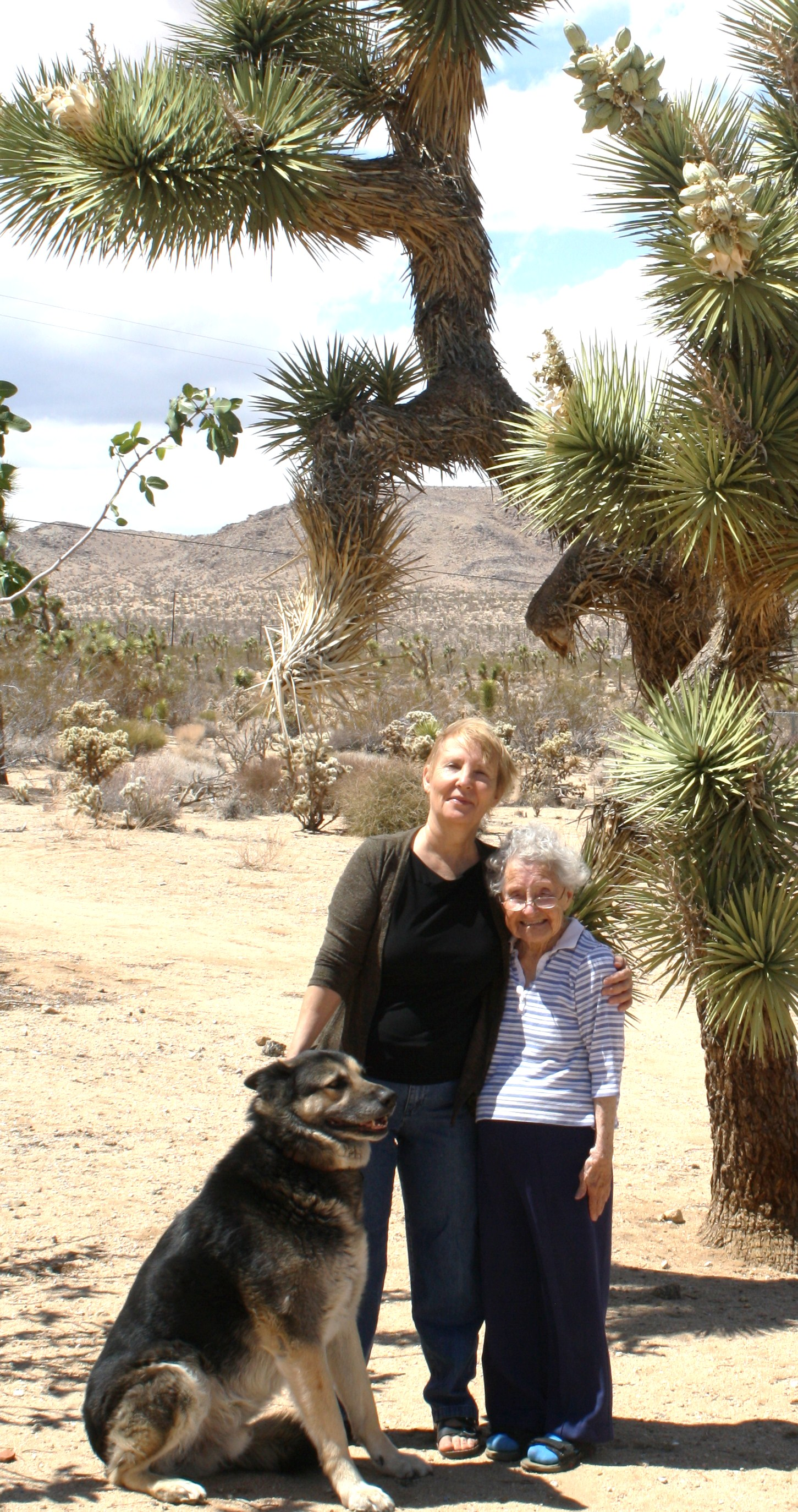 Linda MacKay with her 96-year-old mom, Alice, and her pup in Joshua Tree. [MacKay family photo]