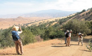 Sierra Club members on a hike through the Tejon Conservancy lands during June of 2009 enjoyed discovering birds and flowers with their cameras, taking the opportunity to capture the wide angle vista as well as the up-close-and-personal views that surrounded them along the way. [photo by Patric Hedlund]