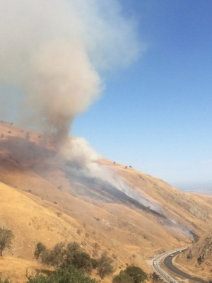 The Tejon fire charges up the hillside from Interstate 5 on the Grapevine. [photo by Gary Meyer]