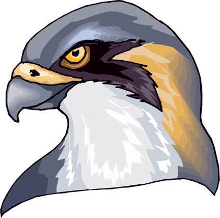 falconhead-cmyk170-trans