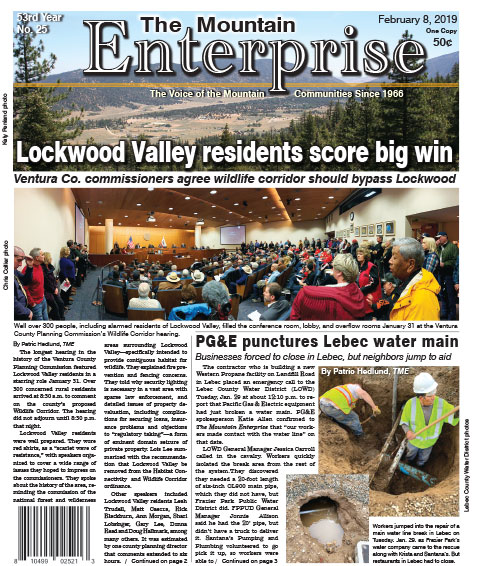 The Mountain Enterprise February 8, 2019 Edition
