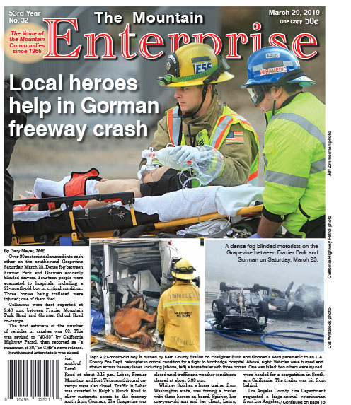 The Mountain Enterprise March 29, 2019 Edition