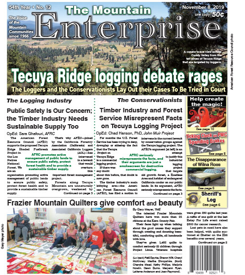 The Mountain Enterprise November 8, 2019 Edition