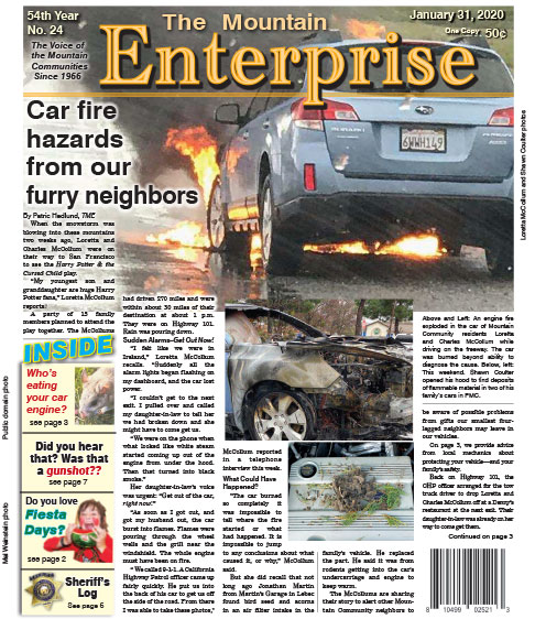 The Mountain Enterprise January 31, 2020 Edition