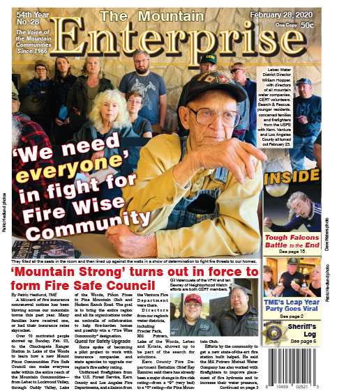 The Mountain Enterprise February 28, 2020 Edition