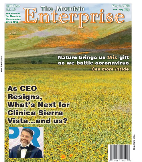 The Mountain Enterprise May 1, 2020 Edition