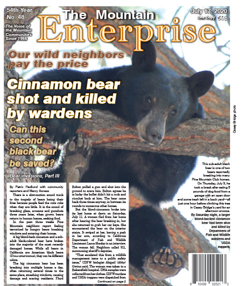 The Mountain Enterprise July 17, 2020 Edition